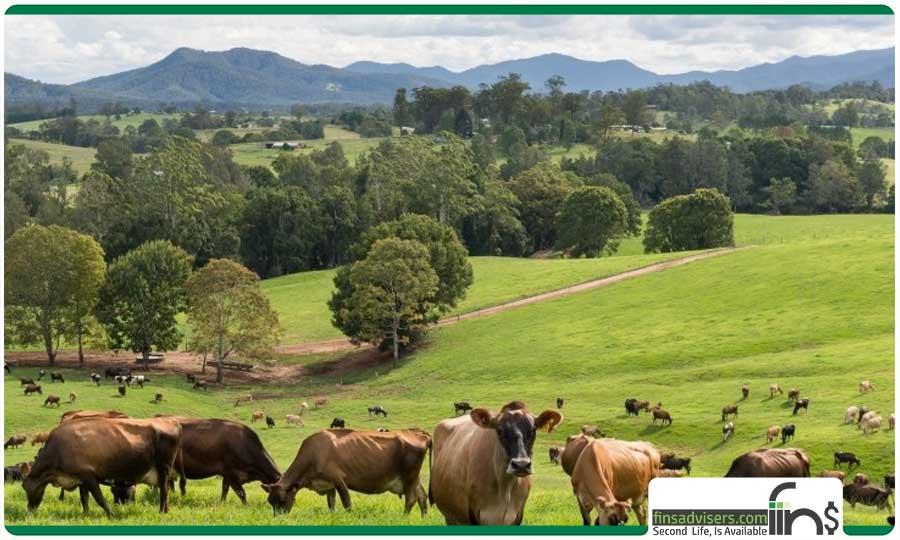 مزارع استرالیا